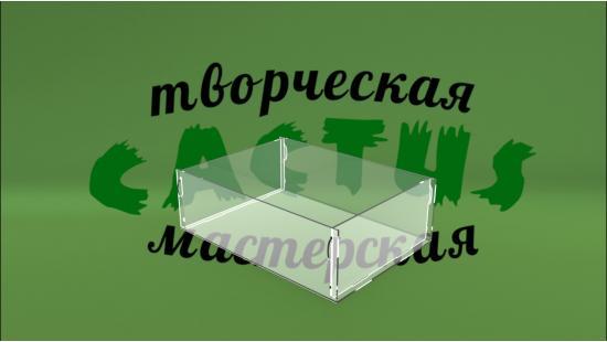Коробка пластиковая