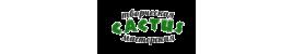 CACTUS творческая мастерская